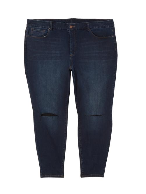 Darien High Rise Skinny Jean